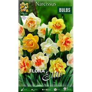 Z Narcissus Double Mixed