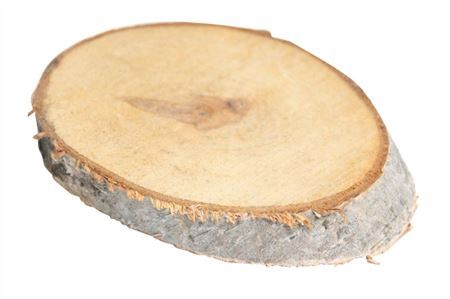 <h4>Basic Birch Slice Oval S 9-11x14-16 H2</h4>