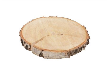 <h4>Basic Birch Slice Rnd D19-22</h4>