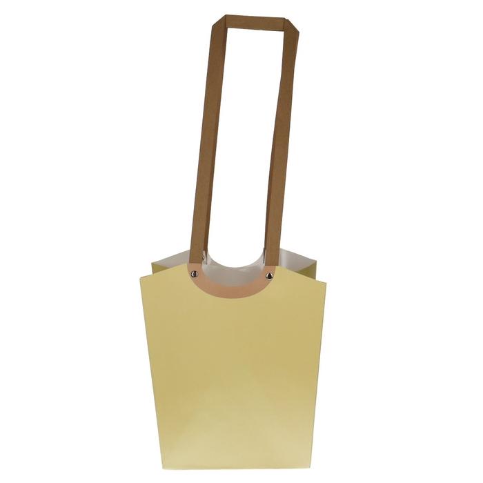 <h4>Bags Aqua d17*13*24cm</h4>