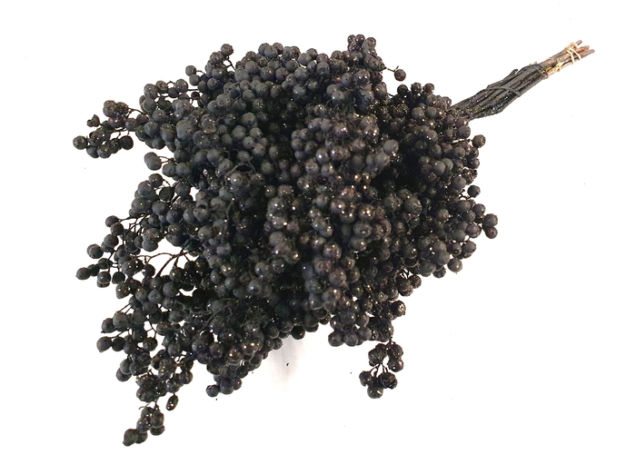<h4>Pepperberries per bunch in poly black with glitter</h4>