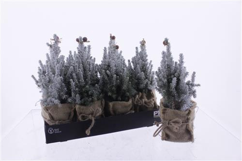 <h4>Kerstboom sneeuw versierd</h4>