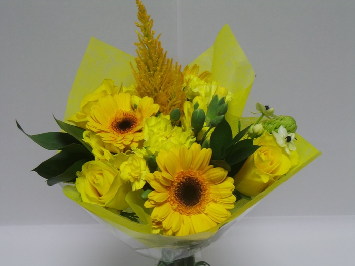 <h4>Bouquet Shorties Yellow</h4>