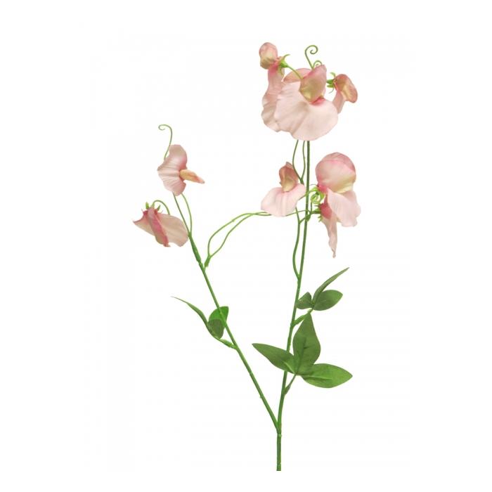 <h4>SILK FLOWERS - LATHYRUS LATIFOLIUS PINK 60CM</h4>