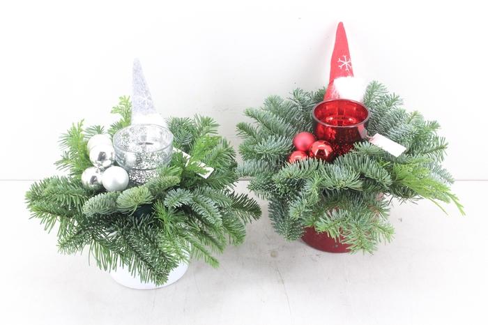 <h4>arr.. Kerst PL - Ker. pot rood/wit</h4>