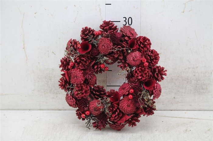 <h4>5326 Wr. Noble Red Christmas D30 H7 H7d30cm</h4>