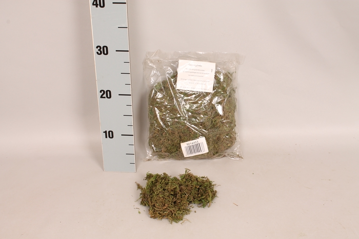 <h4>MOS gedroogde Mos  100 gram</h4>