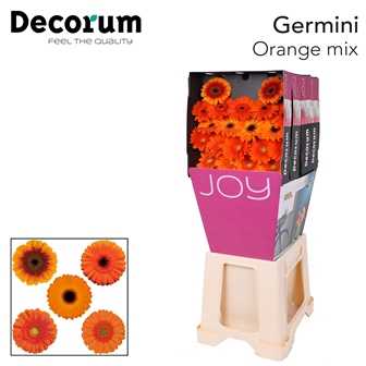 <h4>Ge Mi diamond mix Orange</h4>