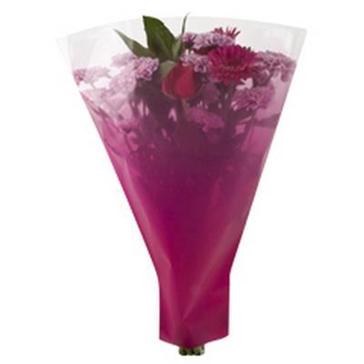 <h4>Housses 52x44x12cm OPP40 Usual rose</h4>