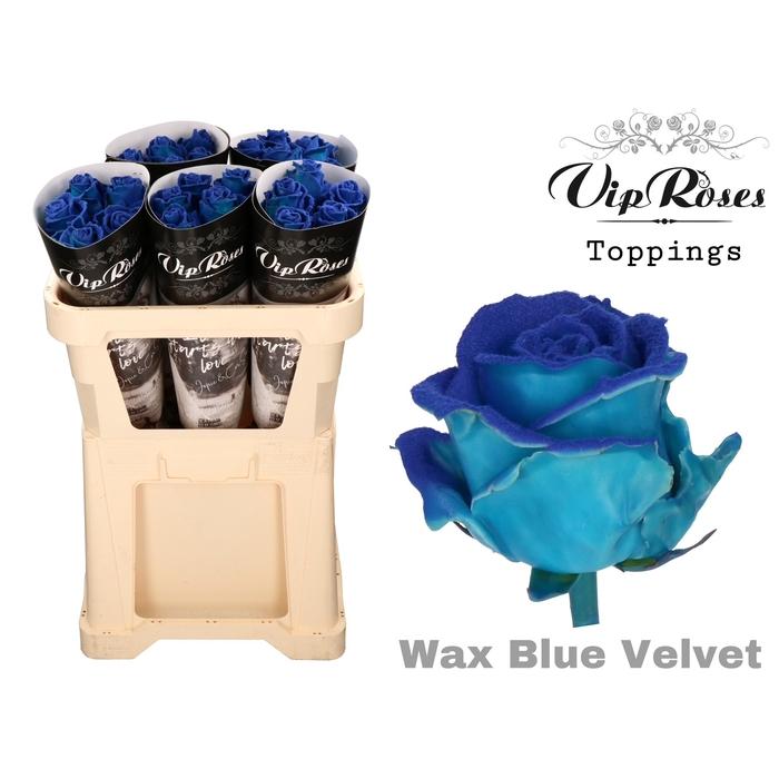 <h4>R GR WAX VELVET BLUE</h4>