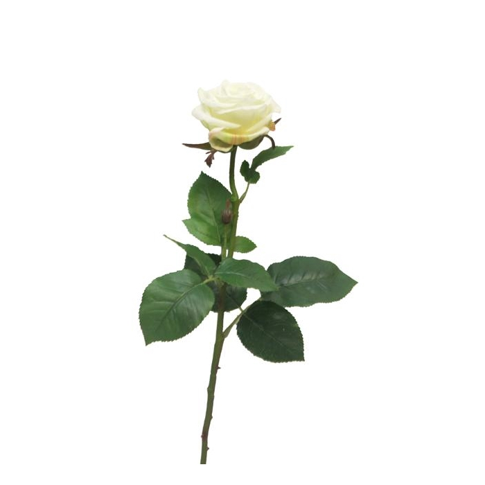 <h4>SILK FLOWERS - ROSA BROCELIANDE CREAM 65CM</h4>