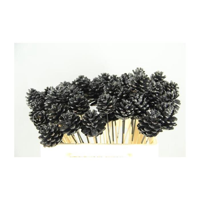 <h4>Stick Pine Cone Black+glitter</h4>