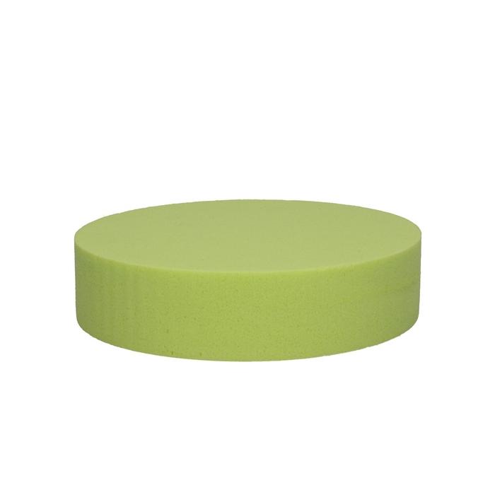 <h4>Oasis Color Cake 20cm</h4>
