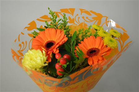 <h4>7 Stelen Oranje</h4>
