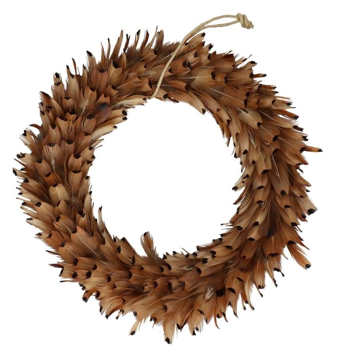 <h4>Wreath d30cm Pheasant feathers</h4>