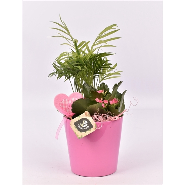 <h4>Keramiek pot rose 13,5cm</h4>