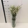 Flor de cera blanca abierta (ofir)