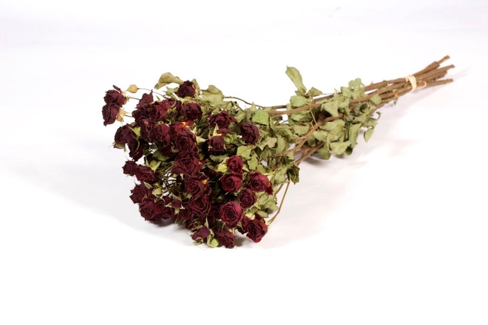 <h4>Roses spray red nat. Craft</h4>