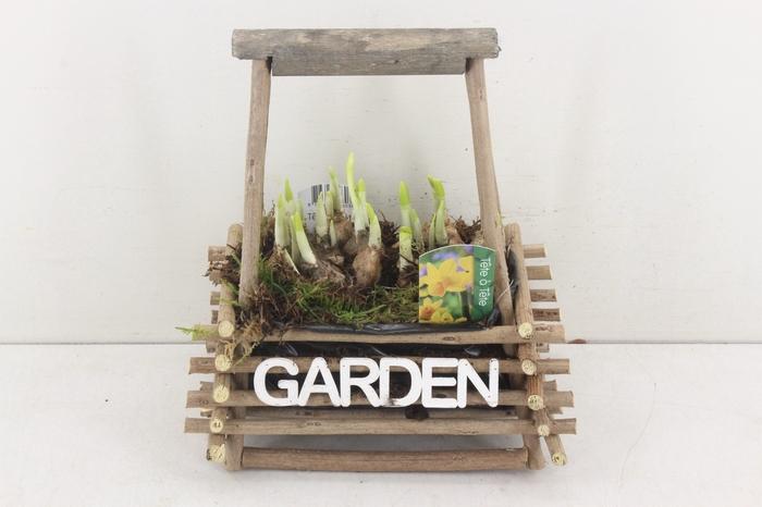 <h4>arr.. Narcis TD423 - Hout hengsel garden</h4>