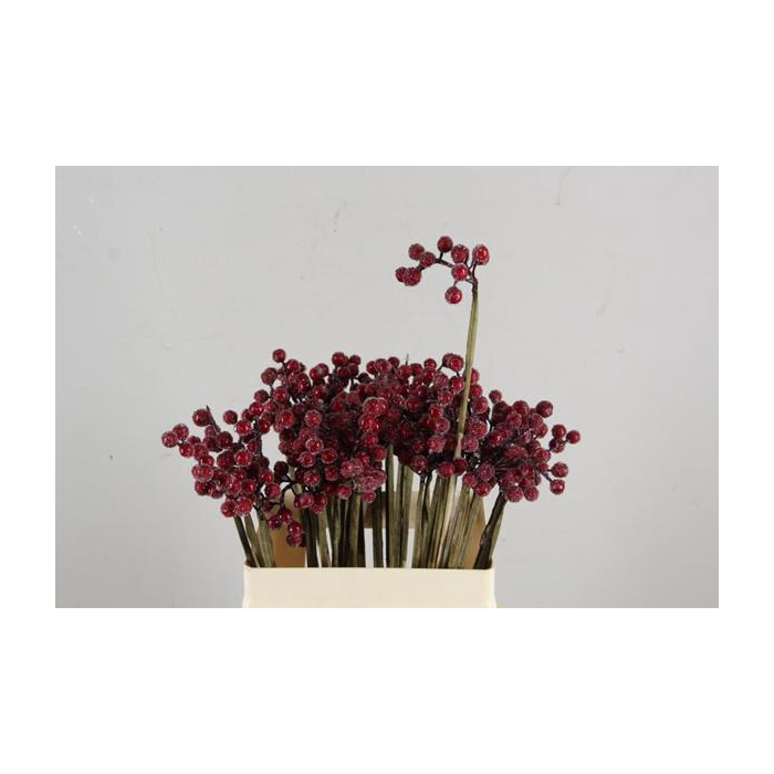 <h4>Stick Berries Red+ice</h4>