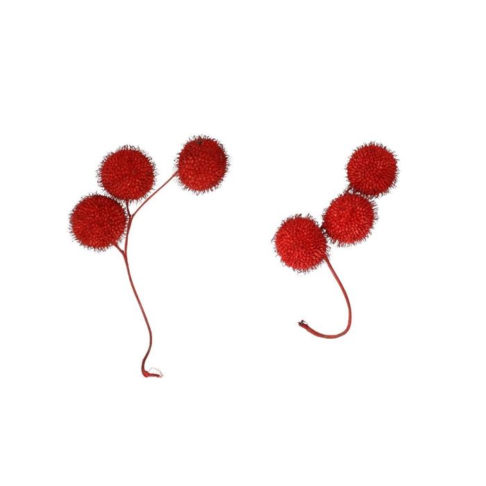 <h4>Decoration Plane balls d3cm</h4>