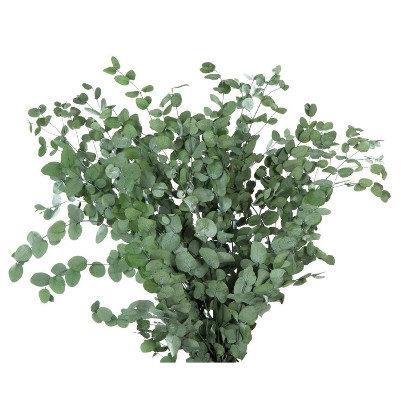 <h4>Eucalyptus Gunny Green GUN/4103</h4>
