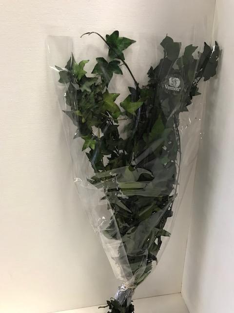 Ivy Tips 60gr groen