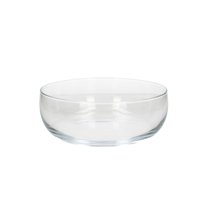 <h4>Glass Bowl round d23*9cm</h4>
