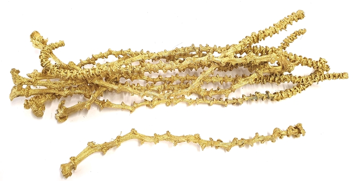 <h4>Banana stem 10pc in poly Gold</h4>