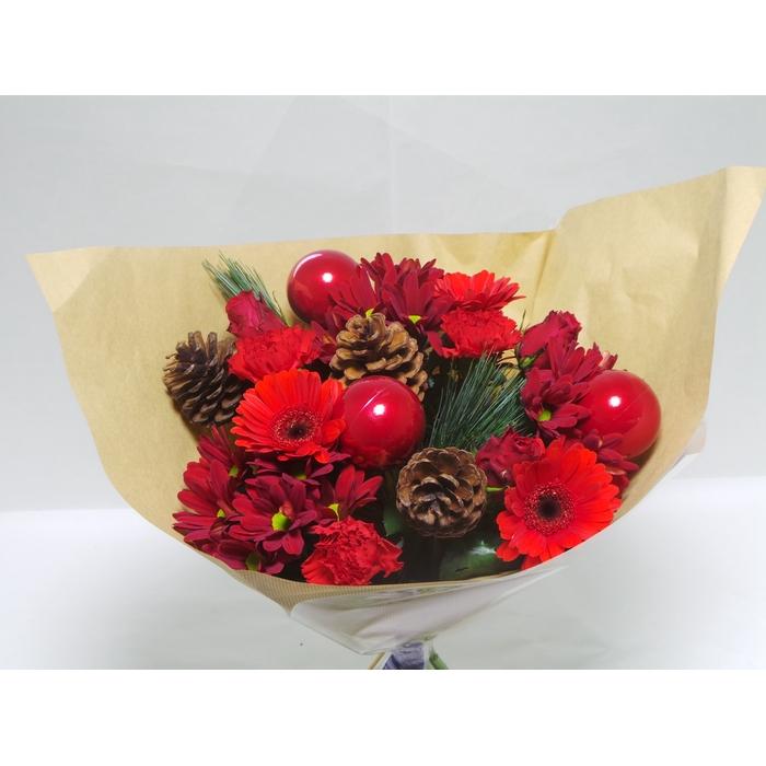 <h4>Christmas Kim Red</h4>