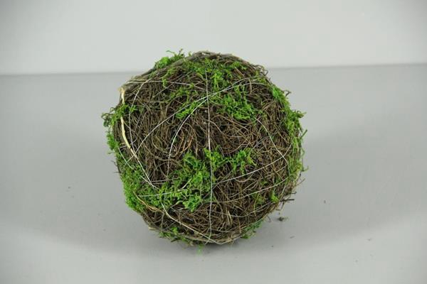 <h4>Ball Salim+moss 15cm</h4>