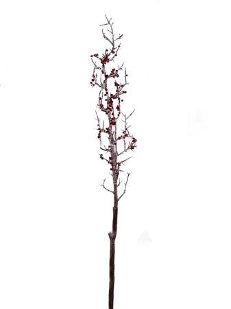 <h4>Flower Marais h82 red/brown</h4>