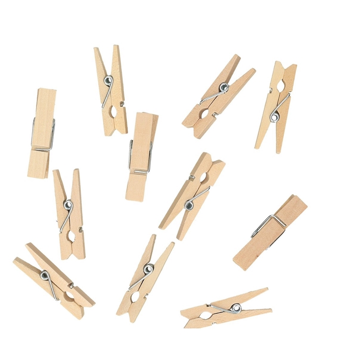 <h4>Decoration Pegs 35mm x100</h4>