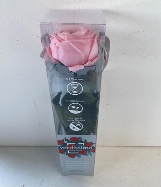 <h4>Tuinroos op steel mini pink plexi</h4>