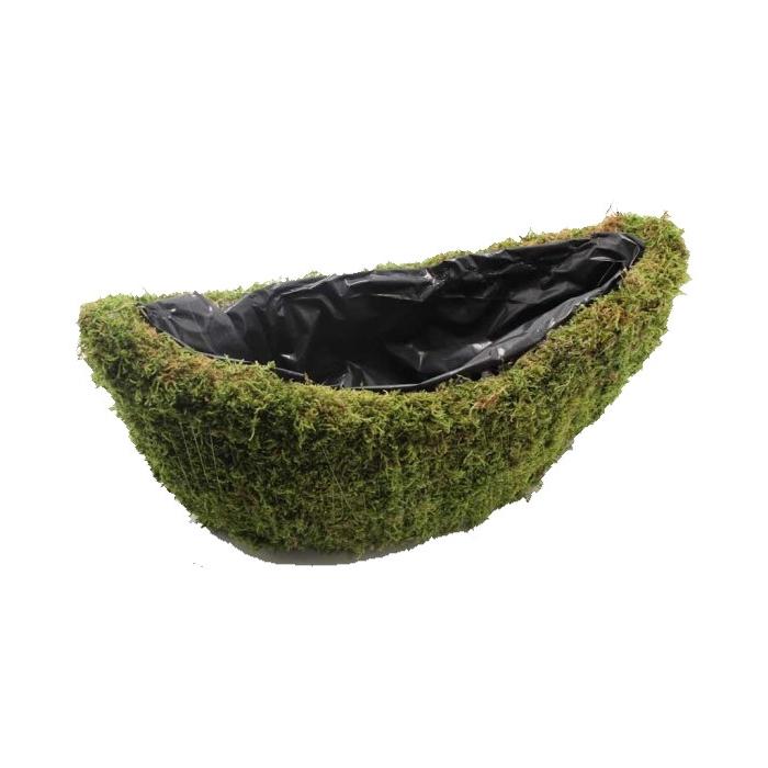 <h4>Planter Flat moss Oval L40cm B14cm Naturel</h4>