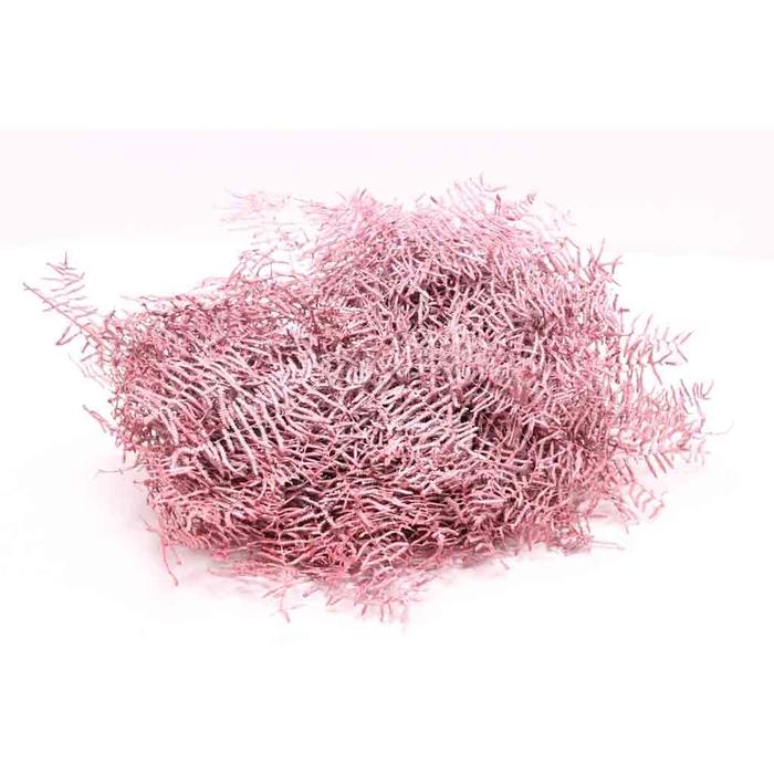 <h4>Coralfern preserved 10st per bunch Metalic Red</h4>