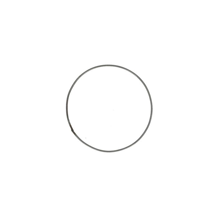 <h4>Bloemisterij Ijzeren ring d20cm</h4>