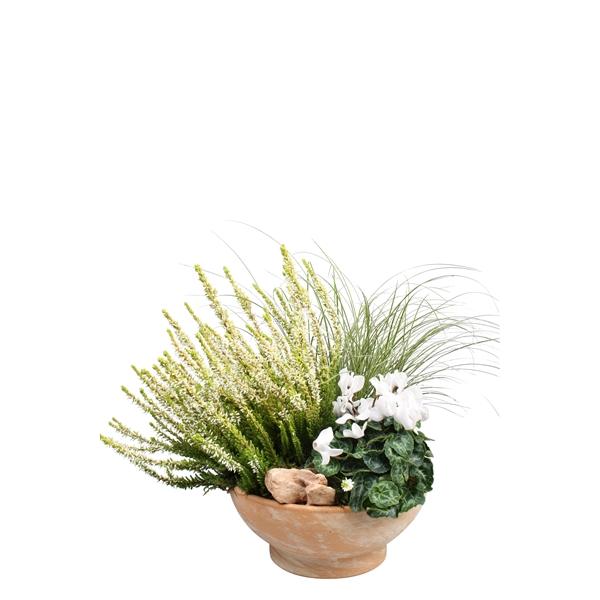 <h4>40141: Outdoor najaar arrangement</h4>