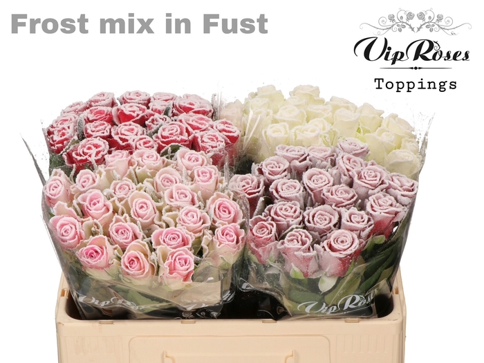 R GR FROST MIX IN FUST