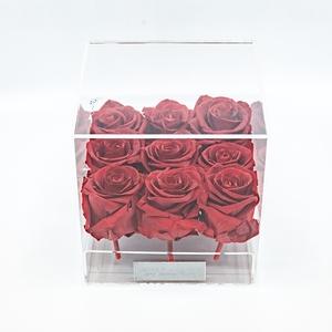 Plexi 15cm rode rozen