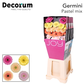 <h4>Ge Mi diamond Pastel Mix</h4>