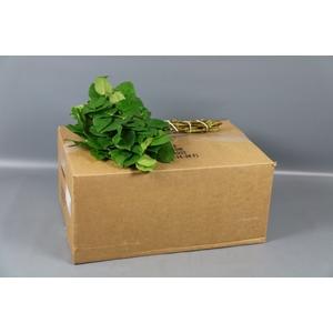 SALAL TIPS BROWN BOX