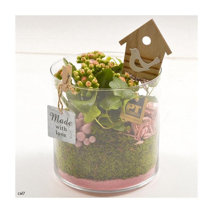 <h4>Arr.   Planten L%</h4>