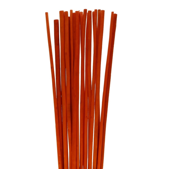 <h4>Dried articles Bamboostick 100cm</h4>
