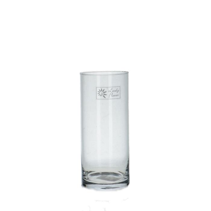 <h4>Glas Cilinder d08.5*21cm</h4>