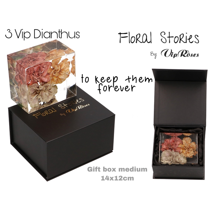 <h4>VIP FOSSIL EPOXY DIANTHUS 3 FLOWERS</h4>