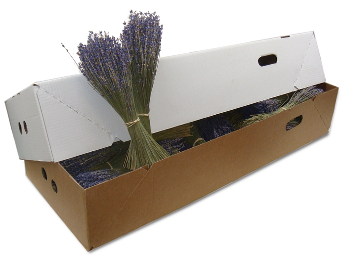 <h4>DRIED LAVANDER BOX</h4>
