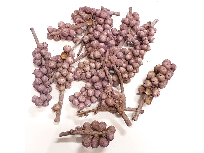 <h4>Acorn bunch 250gr in poly Frosted Milka</h4>