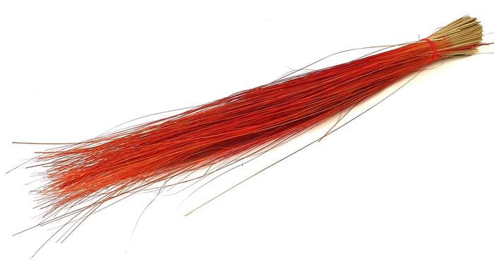 <h4>Beargrass per bunch lgt 70cm Red</h4>