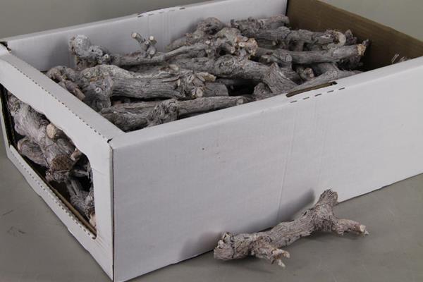 <h4>Grape Wood Box Whitewash 20-25</h4>